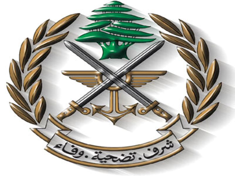 LEBANON: Citizen arrested for smuggling food to terrorist groups in Arsal -