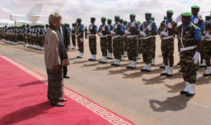 Liberian Leader Inspects Troops In Niger
