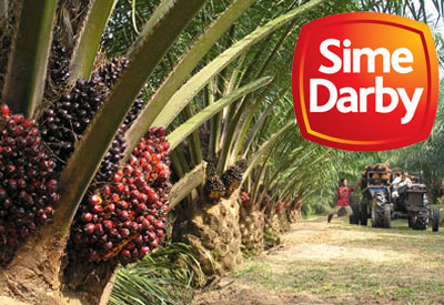 sime darby plantation A plantation workers' union has decided to file an industrial court case on alleged bonus payout discrepancies against sime darby bhd's plantation.