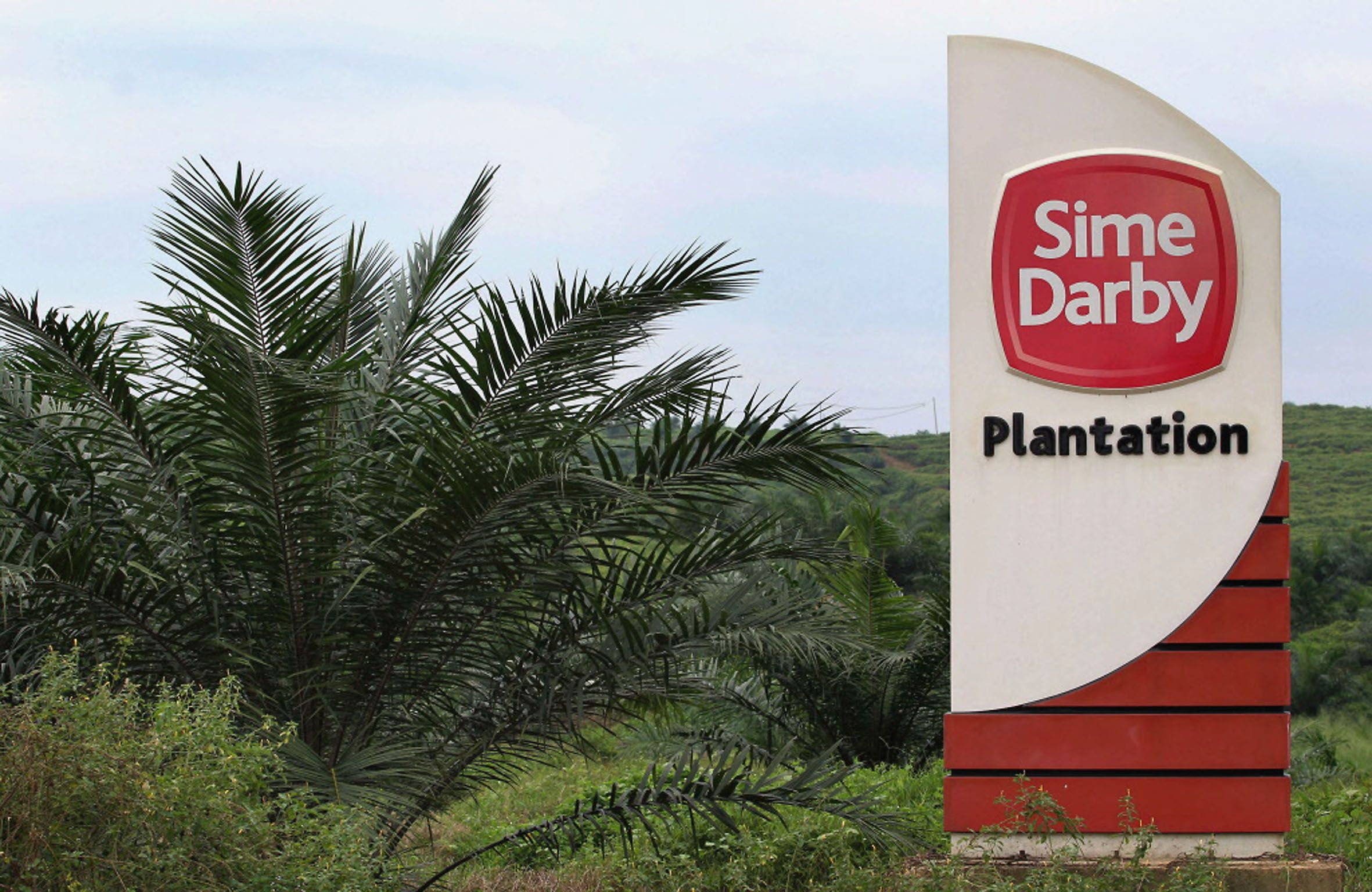 sime darby urged to make report The report should be privy to everyone as it is a big case, umno youth chief khairy jamaluddin said yesterday the rembau mp said the report should be released it will not make a difference to the case as ypb (yayasan pelaburan bumiputra), its ultimate owner, would have received the report.