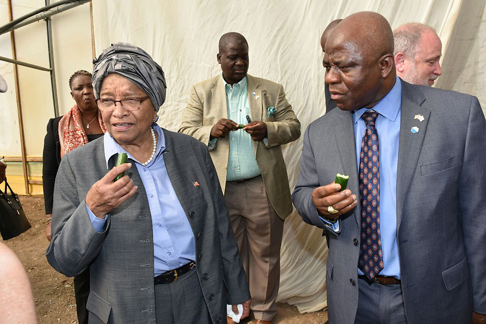 Liberian president and ministers eating Israeli cucumbers (Photo: Shlomi Amsalem, Israeli Foreign Ministry)