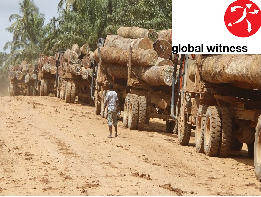 Liberia: Holding the Line – Global Witness Reveals How All of Liberia's Large Logging Contracts Are Illegal On Multiple Counts -
