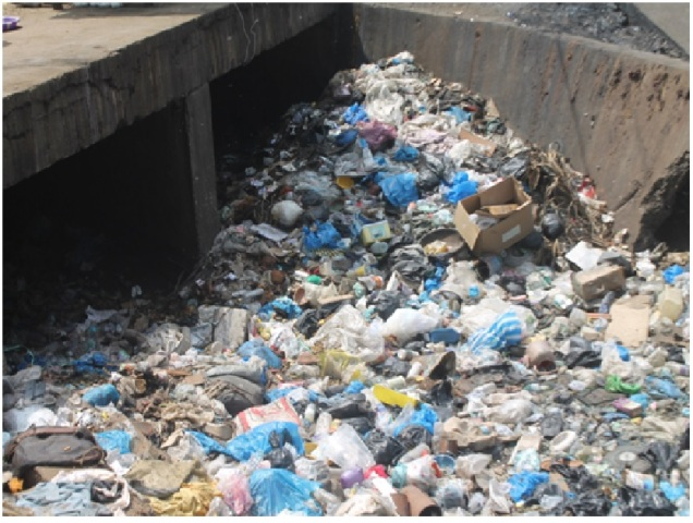 LIBERIA: Filthiness of Biggest Drainage Poses Health Threat Soniwein Residents call for Intervention -