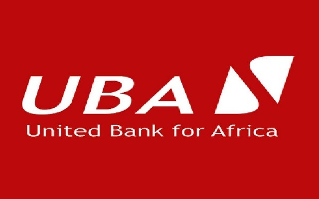 UBA Assisting Cameroon in Its Development Drive -