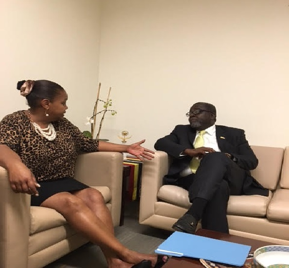 Another Scene Of Ambassador Brown's Courtesy Call